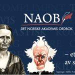 Nettordboken NAOB: Et kjempeløft