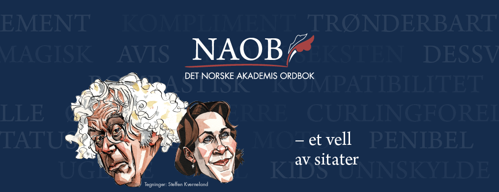 NAOB-bilde-1